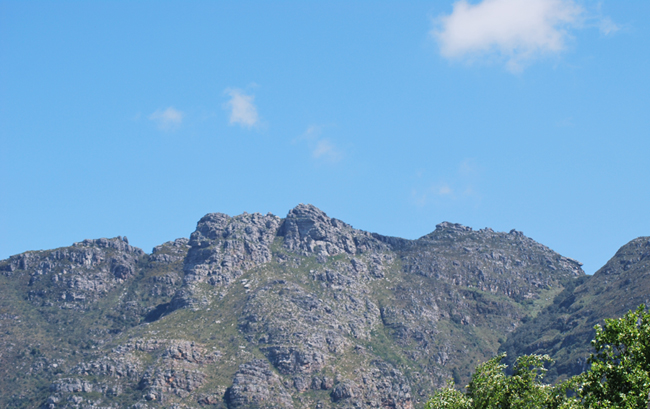Close up view in bright sun under pale blue sky showing a number of big graggy grey boulders with green grass like vegetation growing on and around them on the Window buttress, Table Mountain, east side.