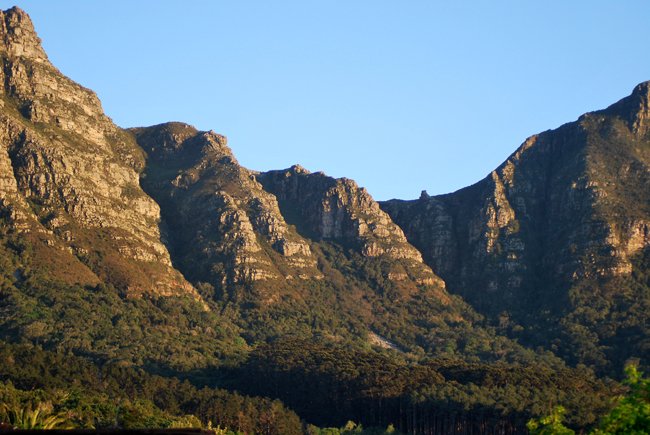 Erica and Els buttresses appear almost to be laying back basking in warm yellow morning sun with evergreen Newlands forest rising up from the valley below the mountain.