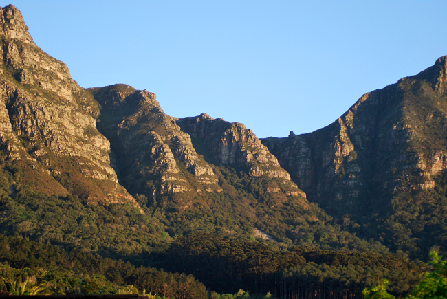Closer view of the buttresses under warm yellow morining sun with Newlands forest trees creeping up the mountain slopes and a  tiny rock formation in the horizon called The Pulpit.