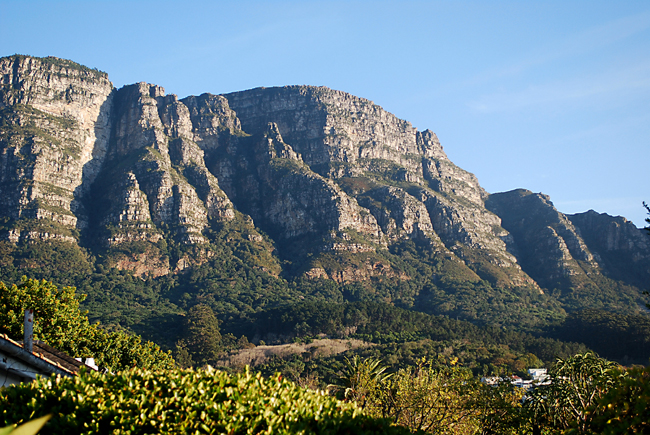 Bright sunlit view of the rugged cleft buttresses and scattard vegetation on the east side of Table Mountain showing deep shadows one of which resembles the profile of a person.