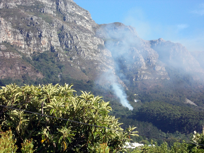 Distant view of a fire in Newlands forest  with a rising column of blue white smoke and a bright yellow helicopter dropping water in spray onto the smoke.
